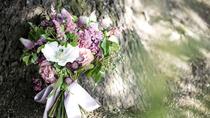 人気シーズン、式場スタイル、ハネムーン…結婚式にまつわるランキング②